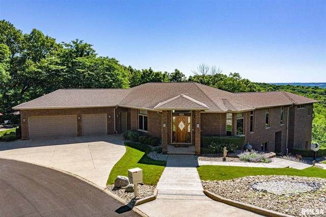 11120 Indian Hill Lane, Peoria, IL 61615 (#PA1216199) :: Killebrew - Real Estate Group