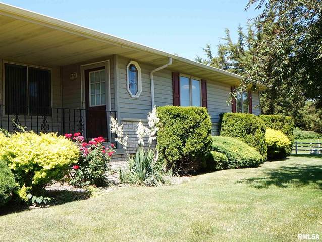1237 47TH Avenue Court, East Moline, IL 61244 (#QC4212592) :: Killebrew - Real Estate Group