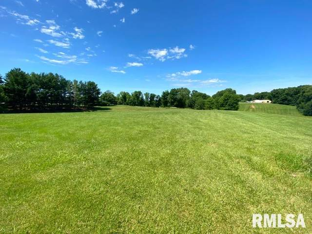 Lot 14 Scenic Hill, De Witt, IA 52742 (#QC4212751) :: RE/MAX Preferred Choice