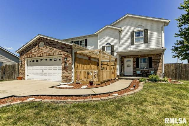 915 Money Tree Drive, Chatham, IL 62629 (#CA1000828) :: The Bryson Smith Team