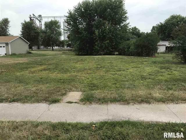 500 E Washington Street, Blandinsville, IL 61420 (#PA1216511) :: Killebrew - Real Estate Group