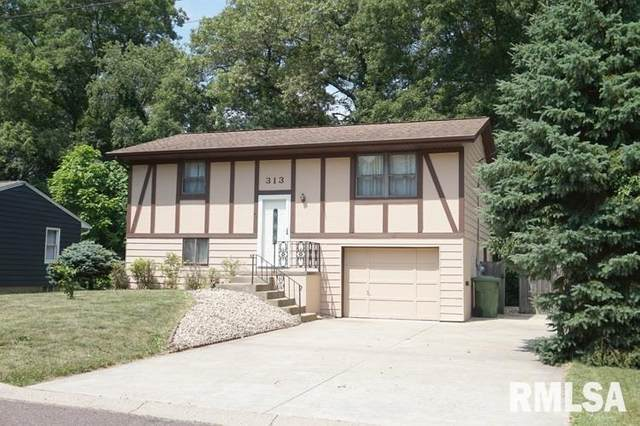 313 Maria Street, East Peoria, IL 61611 (#PA1216655) :: RE/MAX Preferred Choice