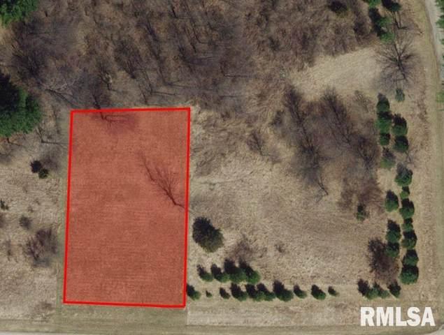181 Oak Run, Dahinda, IL 61428 (#PA1216657) :: RE/MAX Preferred Choice