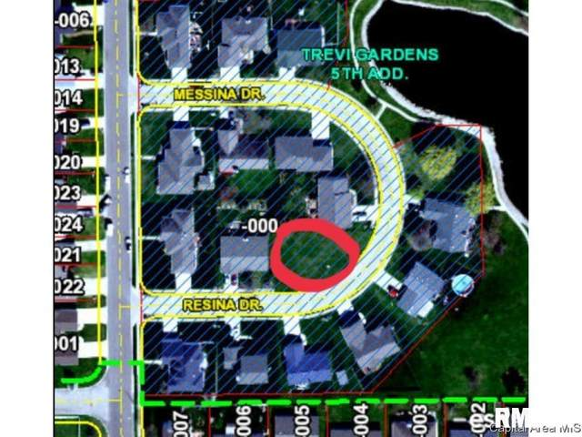113 Resina Drive, Springfield, IL 62703 (#CA1001024) :: RE/MAX Preferred Choice