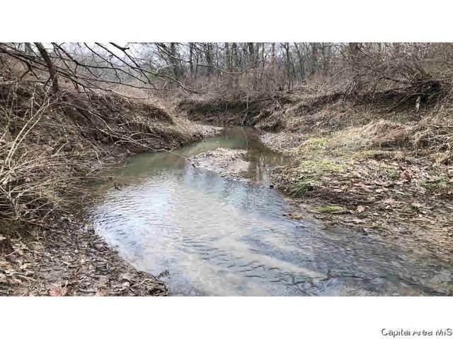 000 County Rd 1250 E, Versailles, IL 62353 (#CA1001030) :: Killebrew - Real Estate Group