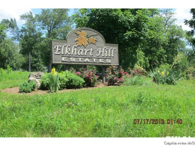 4 Edwards Trace, Elkhart, IL 62634 (#CA1001150) :: The Bryson Smith Team