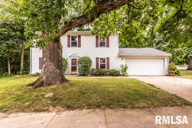 3404 N Molleck Drive, Peoria, IL 61604 (#PA1216941) :: Paramount Homes QC