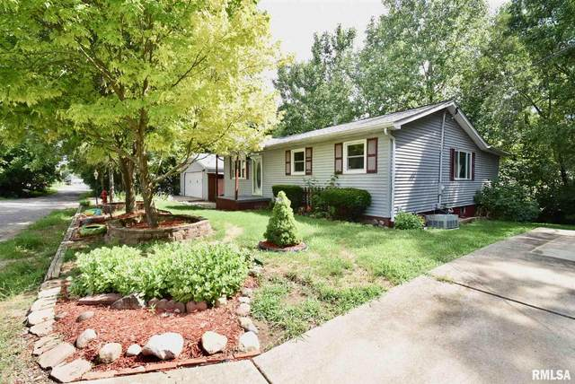 201 Orchard Street, Creve Coeur, IL 61610 (#PA1217007) :: Paramount Homes QC