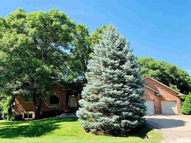 529 Goodsill Drive, East Galesburg, IL 61430 (#CA1001248) :: Killebrew - Real Estate Group