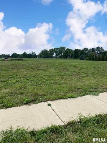 229-231 Turtle Creek Drive, Morton, IL 61550 (#PA1217118) :: Killebrew - Real Estate Group