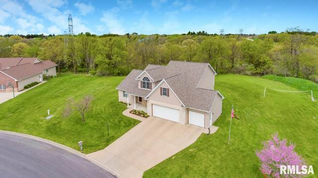 6501 N Grace Lane, Edwards, IL 61528 (#PA1217408) :: Paramount Homes QC