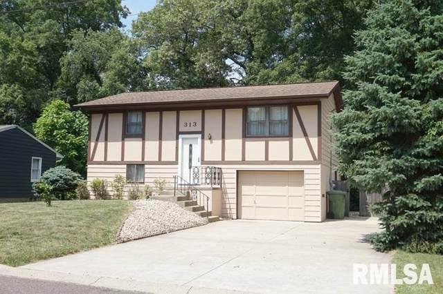 313 Maria Street, East Peoria, IL 61611 (#PA1217575) :: The Bryson Smith Team