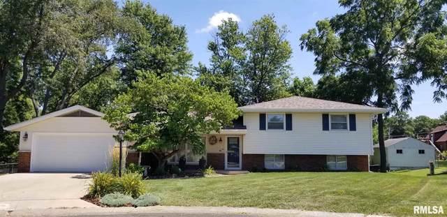 106 Stuaan Court, Bartonville, IL 61607 (#PA1217701) :: RE/MAX Preferred Choice