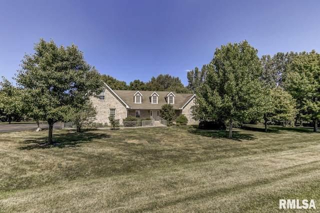 11169 N Old Route 66, Williamsville, IL 62693 (#CA1002082) :: Killebrew - Real Estate Group