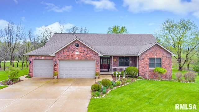 2221 Lakeview Road North, Dahinda, IL 61428 (#PA1218881) :: Killebrew - Real Estate Group