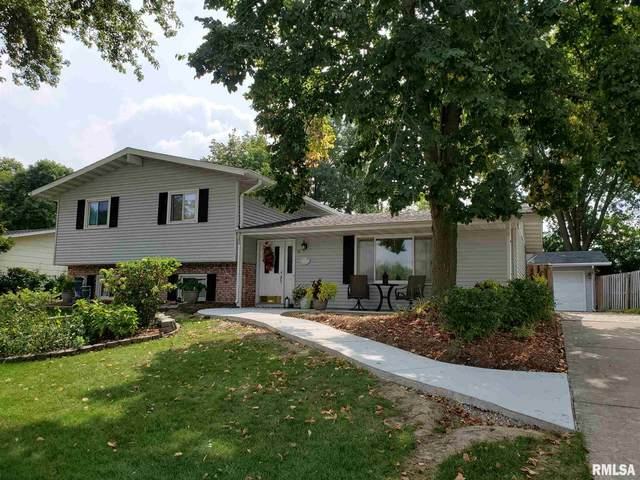 12 Woods Mill Road, Sherman, IL 62684 (#CA1002581) :: Killebrew - Real Estate Group