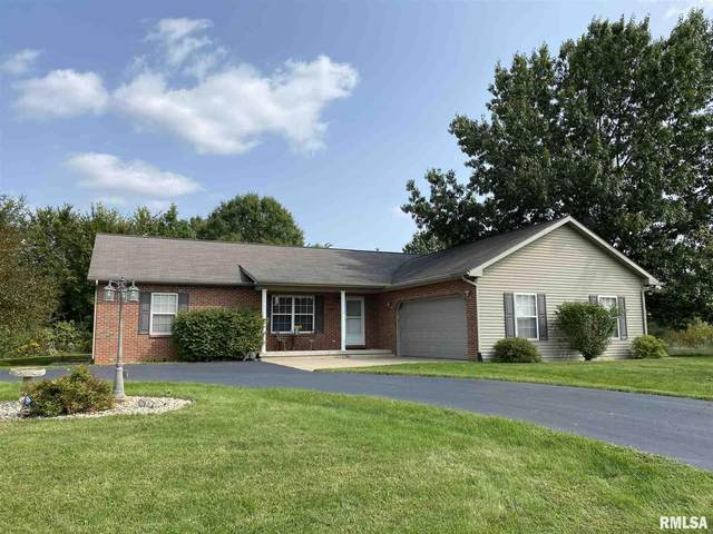 8166 Oak Run Drive, Dahinda, IL 61428 (#PA1219001) :: Paramount Homes QC