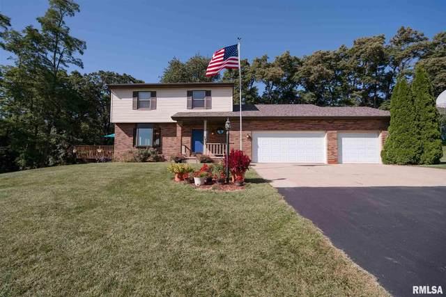 7403 Durham Lake Court, Bartonville, IL 61607 (#PA1219017) :: RE/MAX Preferred Choice