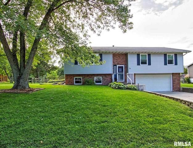 24 Carlton Drive, Mackinaw, IL 61755 (#PA1219026) :: Paramount Homes QC