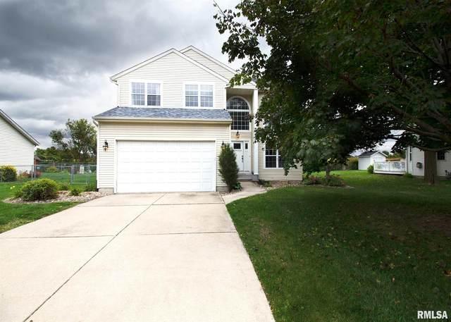 313 8TH Avenue, Hampton, IL 61256 (#QC4215747) :: Paramount Homes QC
