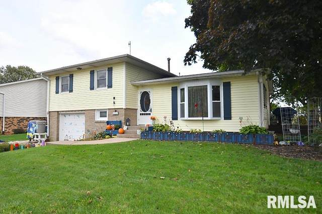 604 W 3RD Street, Sherrard, IL 61281 (#QC4215864) :: Paramount Homes QC