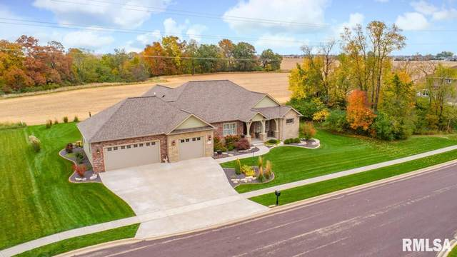 1815 Rustic Oak Drive, Washington, IL 61571 (#PA1219434) :: Killebrew - Real Estate Group