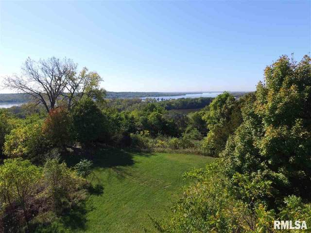26145 Valley Drive, Le Claire, IA 52753 (#QC4216026) :: Killebrew - Real Estate Group