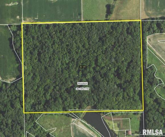 Midway Road, Murrayville, IL 62668 (#CA1003109) :: RE/MAX Professionals