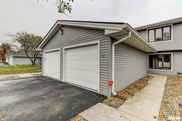 28 Brookside Place, Springfield, IL 62704 (#CA1003254) :: Killebrew - Real Estate Group