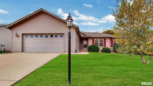 513 S Denver Court, Peoria, IL 61607 (#PA1219895) :: RE/MAX Preferred Choice