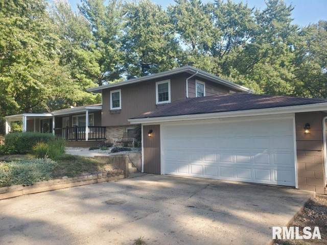 5580 E State Route 54 Road, Spaulding, IL 62561 (#CA1003281) :: Killebrew - Real Estate Group