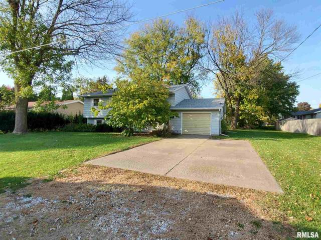 621 E Locust Street, Geneseo, IL 61254 (MLS #QC4216571) :: BN Homes Group
