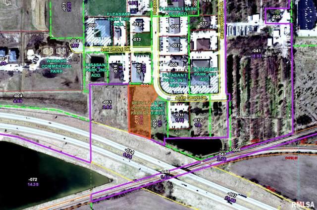 4380 Acer Grove, Springfield, IL 62711 (#CA1003435) :: The Bryson Smith Team