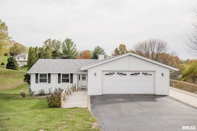 317 Ridgeview Drive, Sherrard, IL 61281 (#QC4216620) :: RE/MAX Preferred Choice