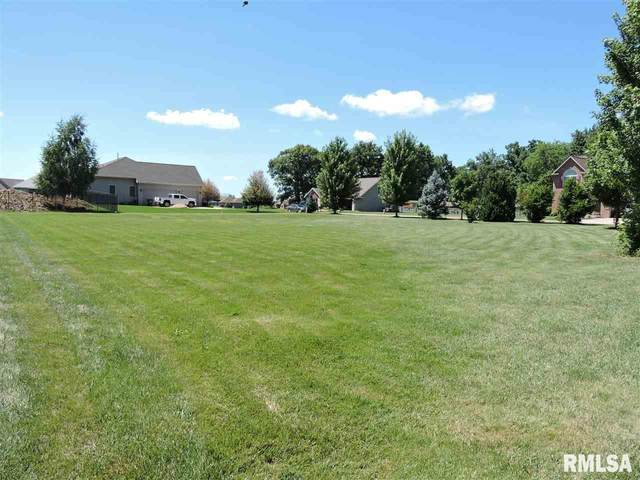 215 & 303 Hidden Brook Drive, Groveland, IL 61535 (#PA1220285) :: Killebrew - Real Estate Group