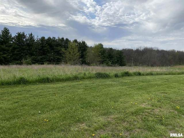 Lot 1 N 1100th, Lynn Center, IL 61262 (#QC4216997) :: Killebrew - Real Estate Group