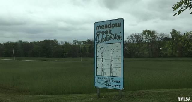 1 A W Meadow Creek Lane, Lynn Center, IL 61262 (#QC4217205) :: RE/MAX Preferred Choice