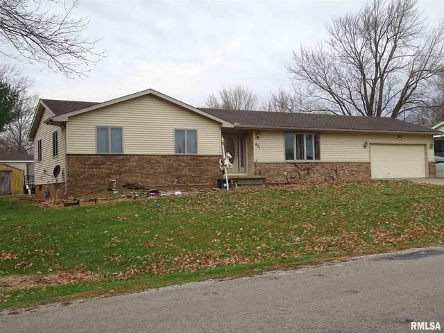 401 Commonwealth Avenue, Kincaid, IL 62540 (#CA1003915) :: RE/MAX Preferred Choice