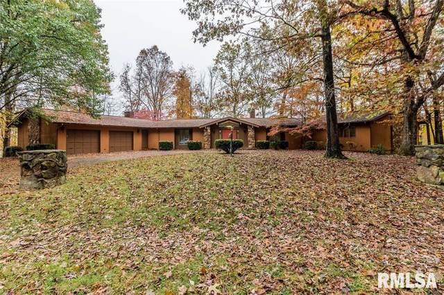 43 Lake Shore Court, Carbondale, IL 62901 (#EB437297) :: Paramount Homes QC