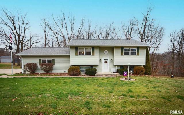 199 Cahokia Drive, Sparland, IL 61565 (#PA1221015) :: Killebrew - Real Estate Group