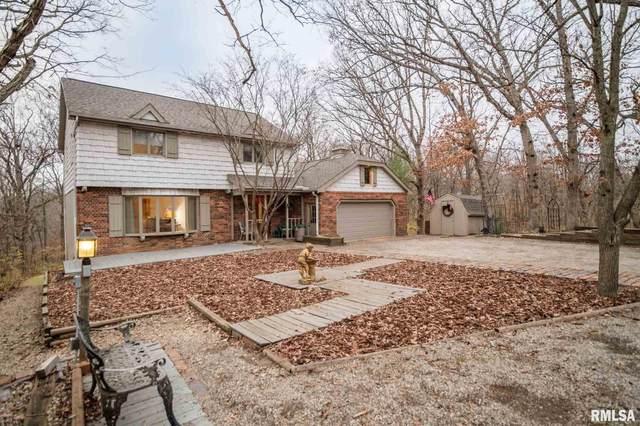 1173 N Olde Farm Road, East Peoria, IL 61611 (#PA1221048) :: Paramount Homes QC