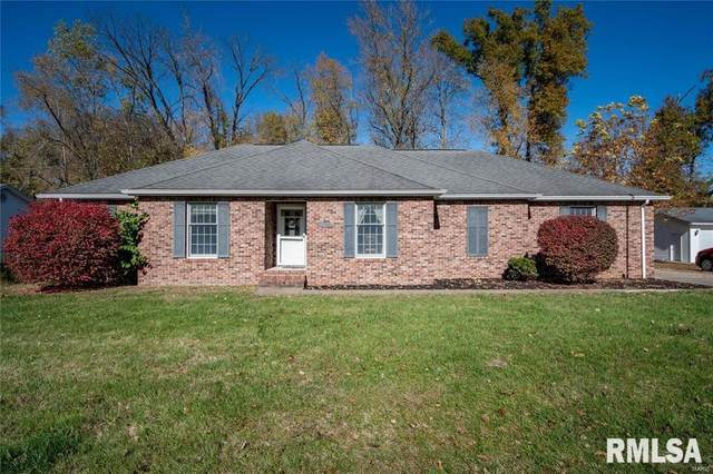 11006 Frosty Lane, Johnston City, IL 62951 (#EB437569) :: Paramount Homes QC