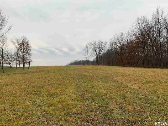 Lot 190 South Gap, Danvers, IL 61732 (#PA1221100) :: Killebrew - Real Estate Group