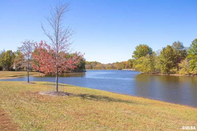 E Wantland Drive, Taylorville, IL 62568 (#CA1004215) :: Nikki Sailor | RE/MAX River Cities
