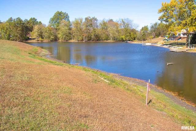 E Wantland Drive, Taylorville, IL 62568 (#CA1004216) :: Nikki Sailor | RE/MAX River Cities
