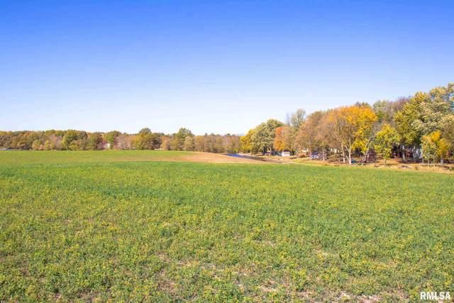 E Wantland Drive, Taylorville, IL 62568 (#CA1004217) :: Kathy Garst Sales Team