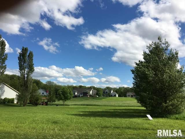 15 Guinan Lane, Petersburg, IL 62675 (#CA1004295) :: Nikki Sailor | RE/MAX River Cities