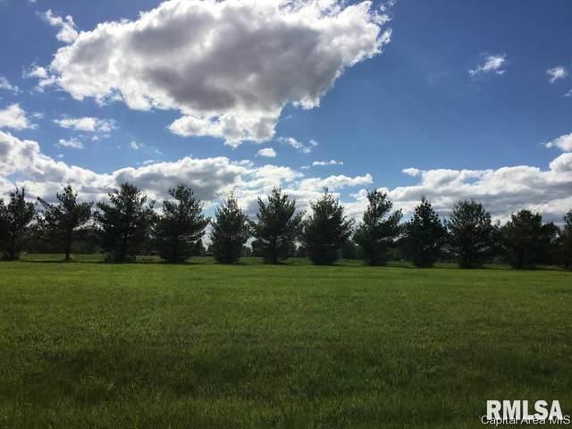 21 Guinan Lane, Petersburg, IL 62675 (#CA1004304) :: Nikki Sailor | RE/MAX River Cities
