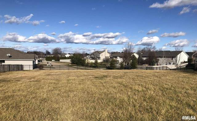 256 Karagen Circle, Germantown Hills, IL 61548 (#PA1221277) :: RE/MAX Preferred Choice