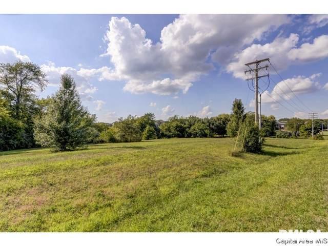8901 Gordon Drive, Chatham, IL 62629 (MLS #CA1004448) :: BN Homes Group